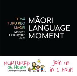 Maori Language Moment